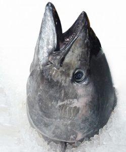 新巻鮭の頭の切り方はどうやる?