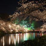 東京の夜桜デートスポットおすすめ、お散歩の持ち物はどうする?
