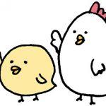 鶏肉のもも肉とむね肉の違いや調理方法&ヘルシーなのはどっち?