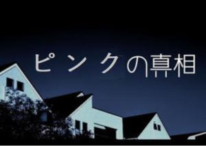 パンダ【ピンクピン太郎とは何?】香香が名前ではないのか!?