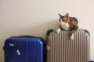 スーツケースのパッキング方法は?