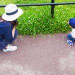 子供の散歩はどんな効果がある?毎日したり【リード】はいる!?